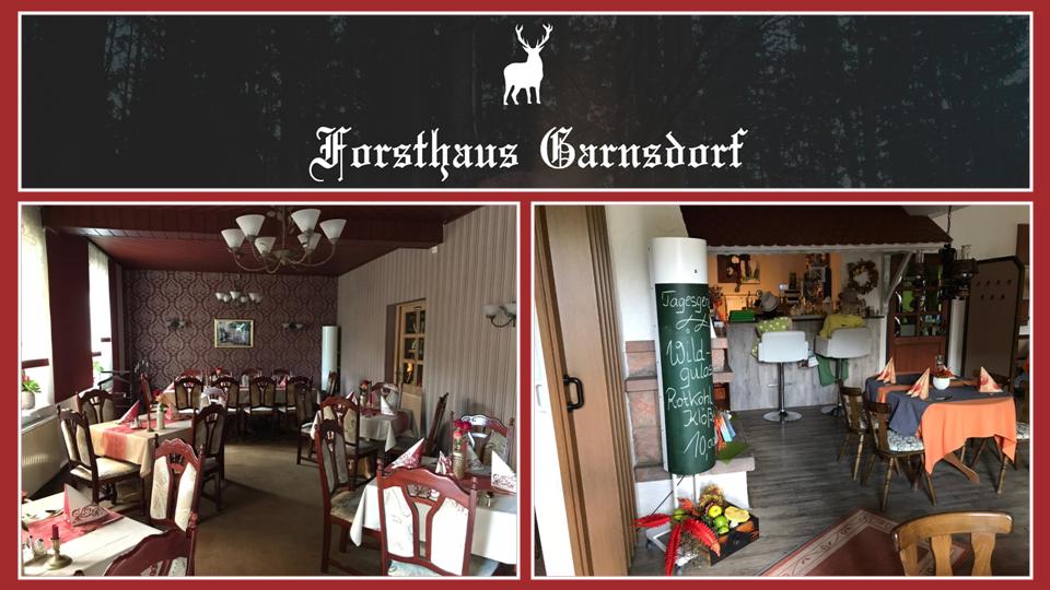 TBRS-1 Raumluftentkeimung Forsthaus Garnsdorf