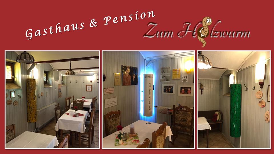 TBRS-1 Raumluftentkeimung-Gasthaus Holzwurm